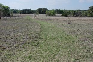 Near Meadow