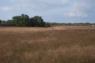 near-meadow-drainage226