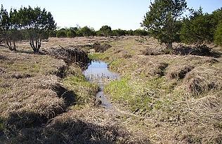 west-gully012-4-2005